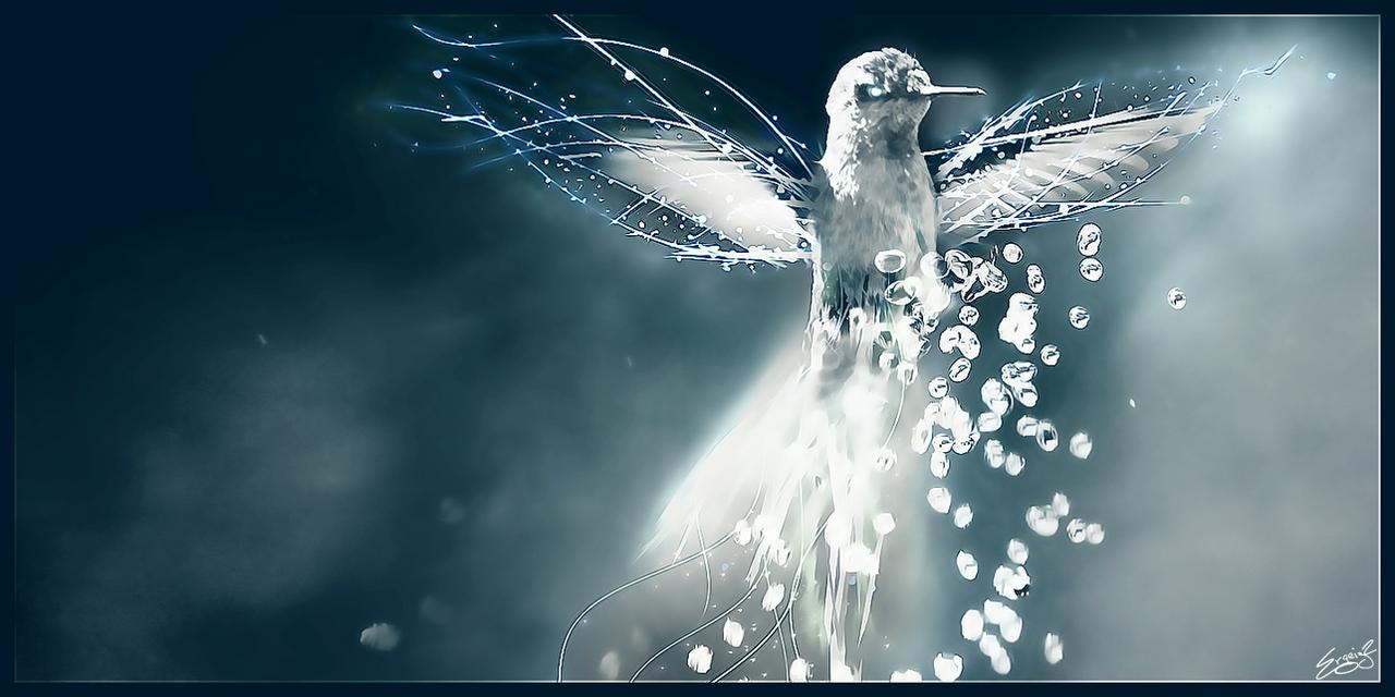 Magic Kolibri By Ergeiz2 On DeviantArt