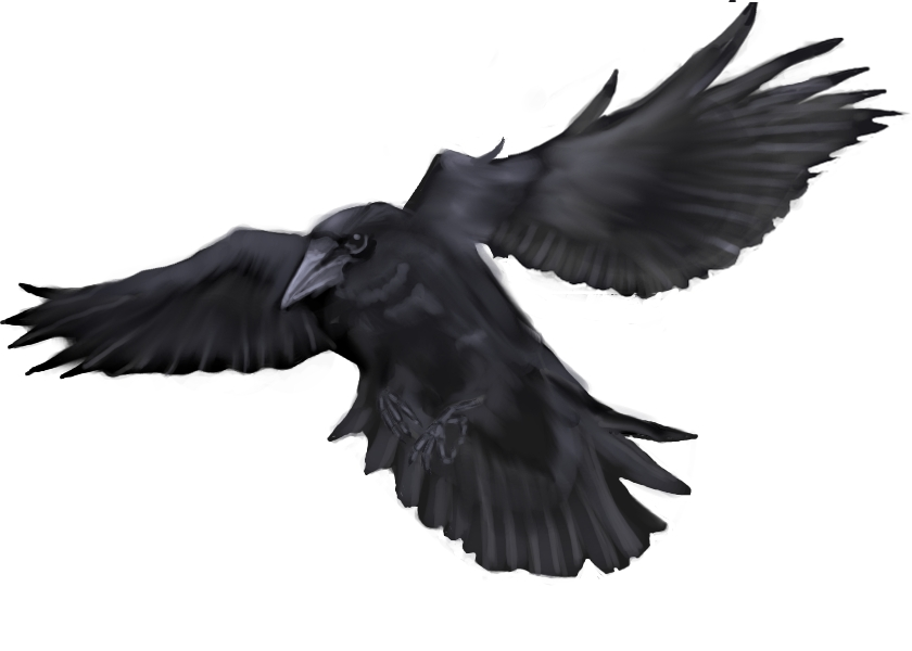 Flying Crow by 1two3four5six7 on DeviantArt