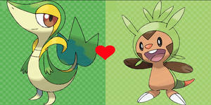 Snivy X Chespin