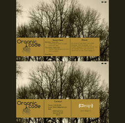Organic (WebSite Template Design)