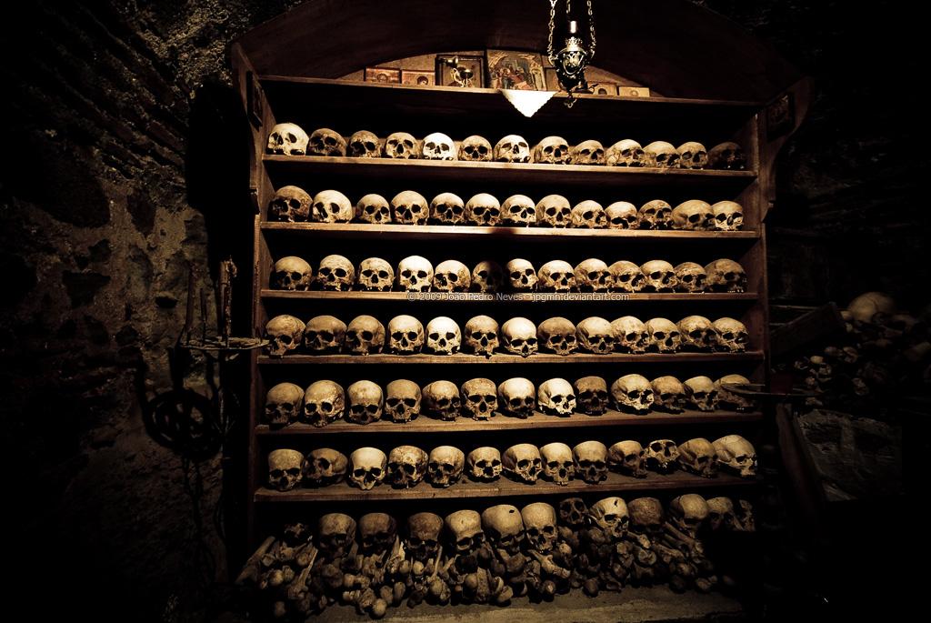 Skulls On The Shelves by jpgmn