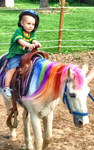 Who Wants to Ride the Rainbow Pony