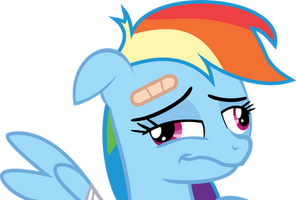 Rainbow Dash gone and derped herself by romerboy55