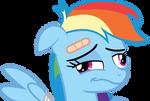 Rainbow Dash gone and derped herself