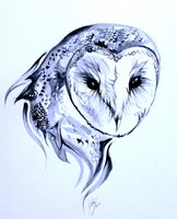 Barn Owl Tattoo By Lucky978-d5yrgsm by TAILSfails