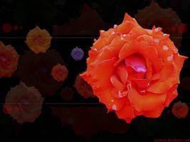 Flora by reynante