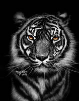 Large Tiger by marmicminipark