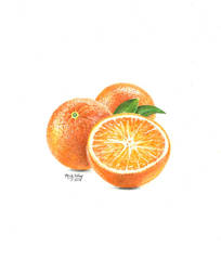 Orange You Happy? by marmicminipark