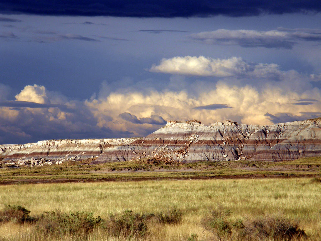 Petrified forest/Painted desert by alucard214