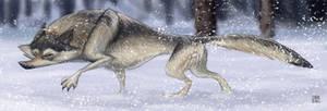 Bad Wolfie
