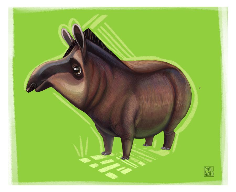 Tapir by CarolineRaquel