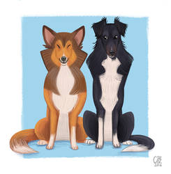 Pet Portrait - Teff  and Tiss by CarolineRaquel