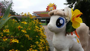 Sunny Days at Pacific PonyCon w/ MissionBelle Pt12 by PacificPonyCon