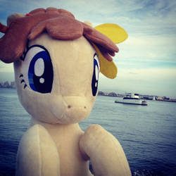 Sunny Days at Pacific PonyCon w/ MissionBelle Pt23 by PacificPonyCon