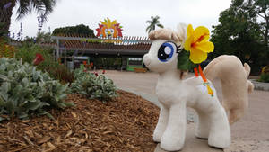 Sunny Days at Pacific PonyCon w/ MissionBelle Pt24