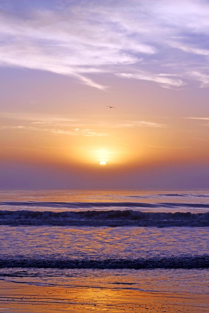 Sunrise on Hilton Head Island by winterface