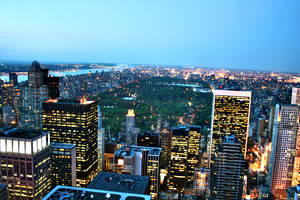 Central Park. by addiicted