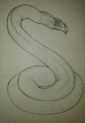 Commission : White Dragon