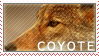 Coyote Stamp by Jingle-the-Hamster