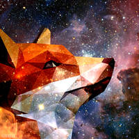 Fox by aoromore
