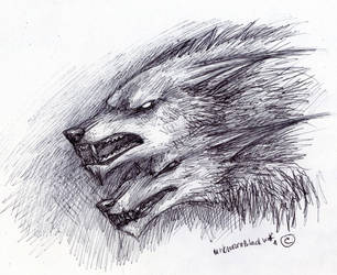 quick scetch Tybalt by UnknownBlackWolf