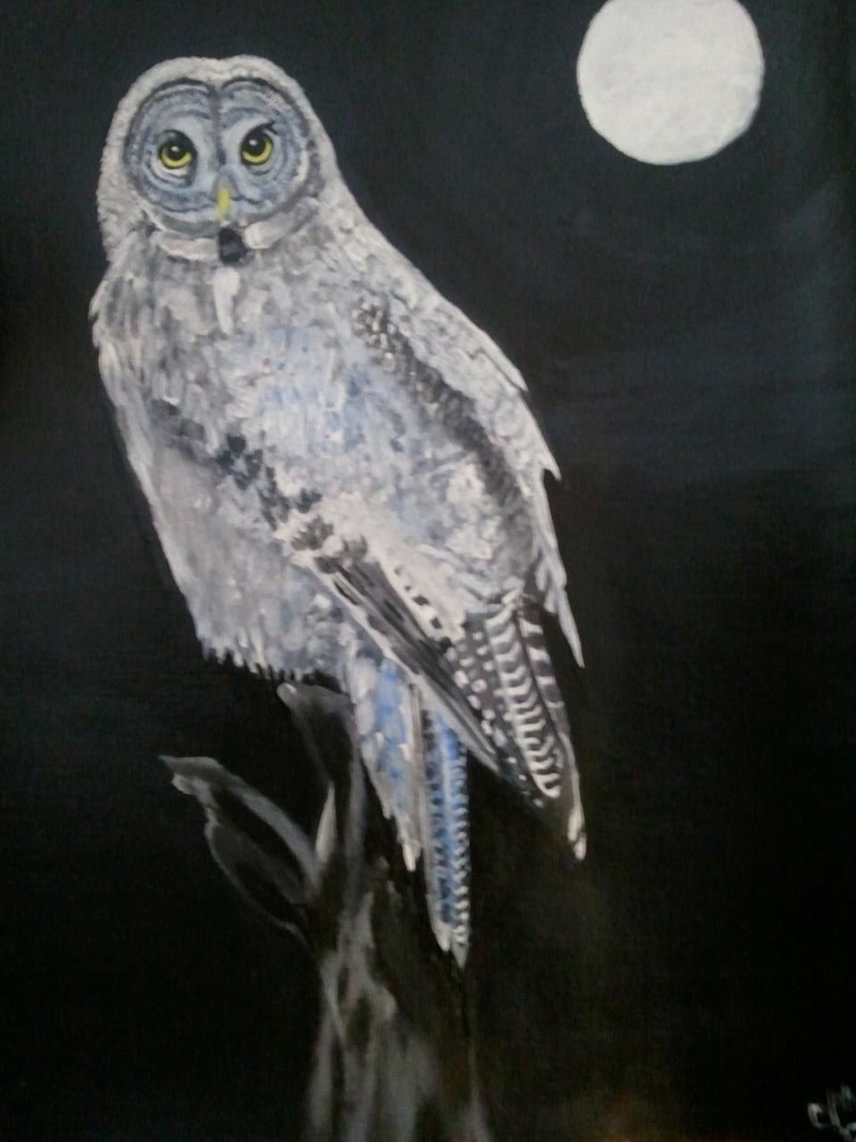 Acrylic owl by ravencolored