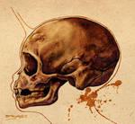 Faerie Skull