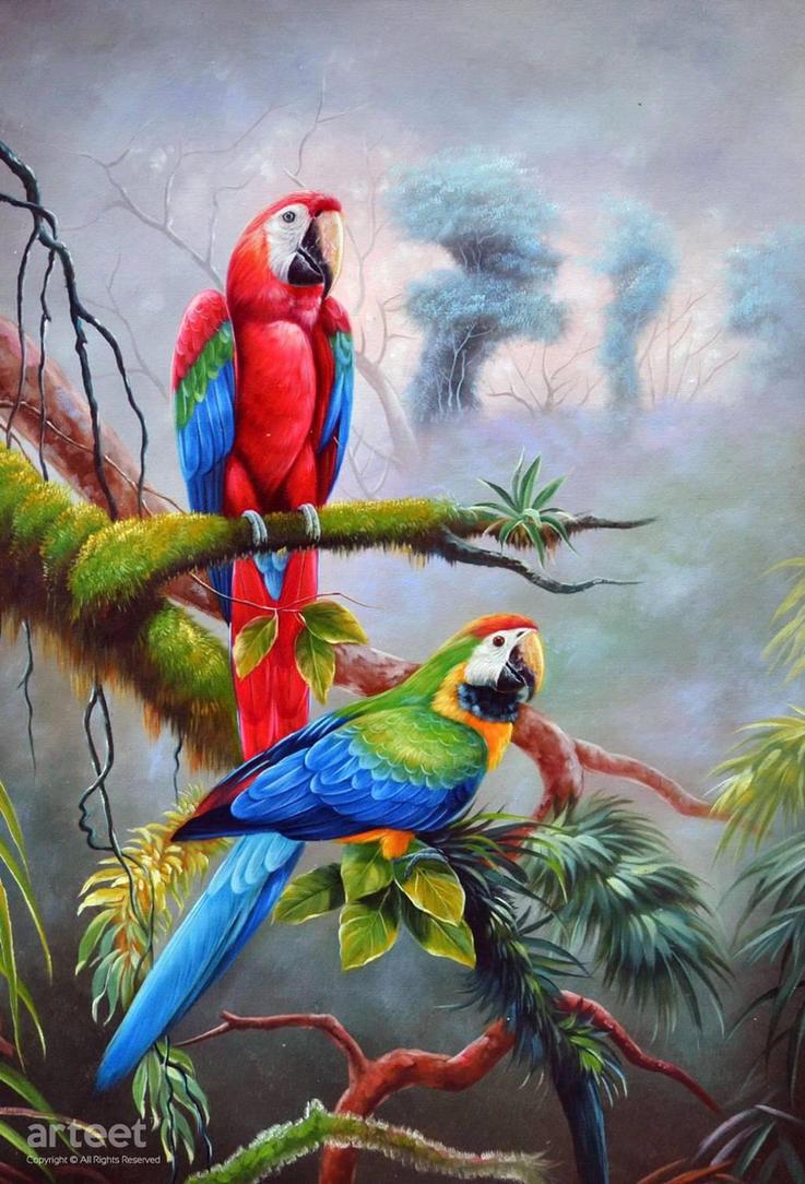 Scarlet Macaws - Arteet by Arteet
