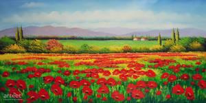 Red Poppies Flower Field - Arteet