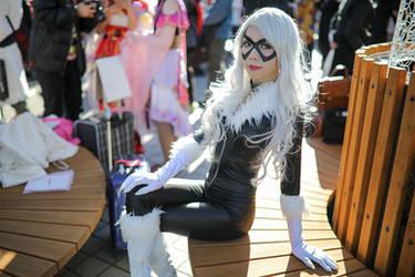 DC Comics Blackcat Shunya Yamashita Ver. Cosplay