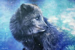 Wee Artic fox by 1chick1