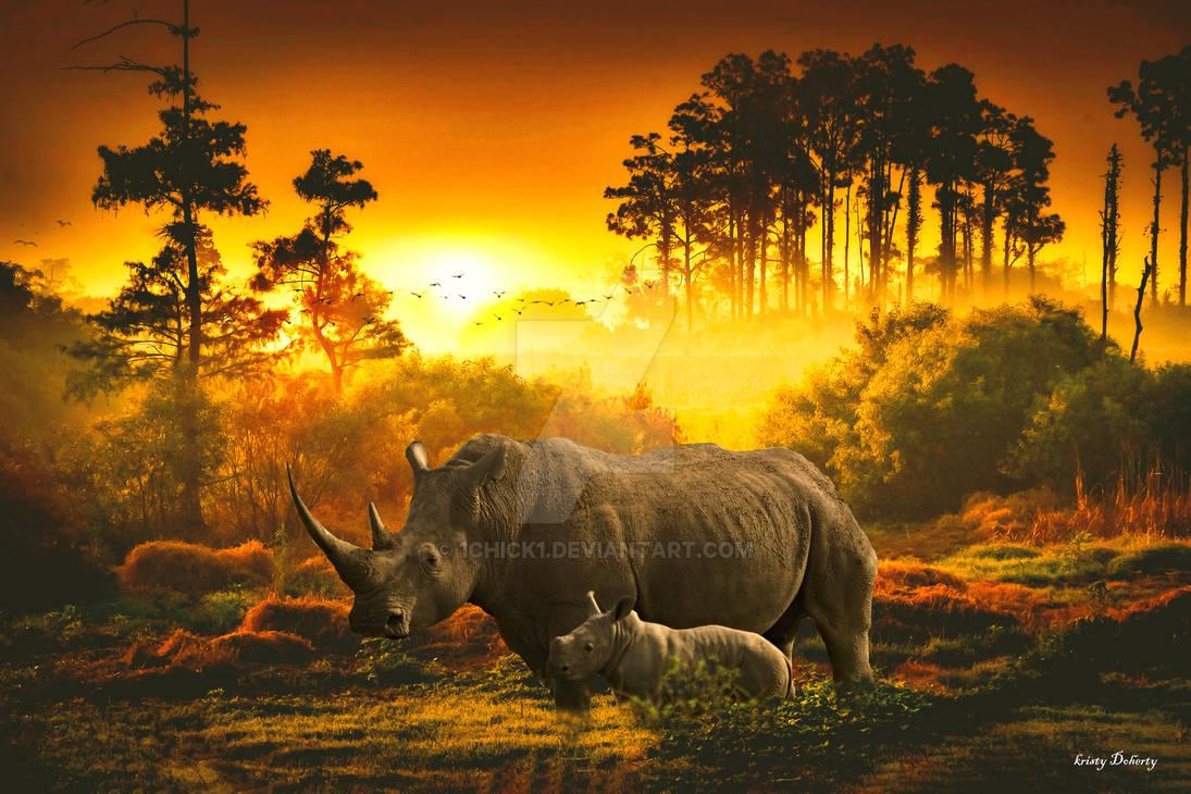 Keep rhinos this way