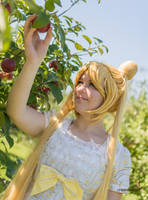 Even senshi need apples by cyberfox007