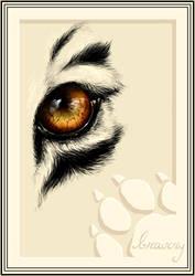 eyes like sunset... by ademh