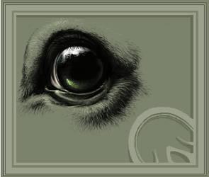 eyes like deep pools... by ademh