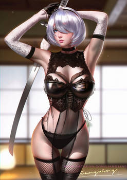 2B Sexy lingerie