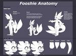 Fooshie Anatomy Sheet [Semi-Open Species]