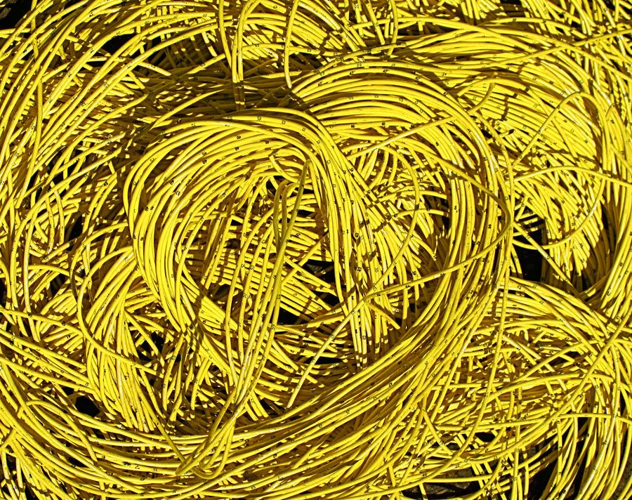 Yellow Nest