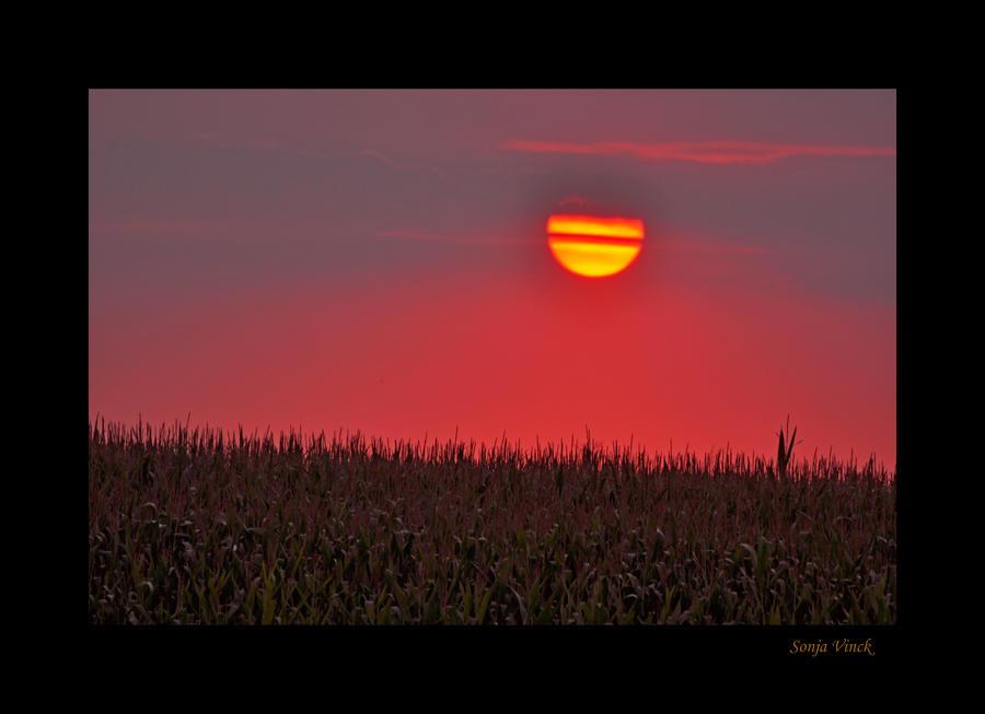 The broken sun by Lentekriebel