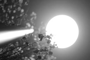 A strange Moon by Kalabint