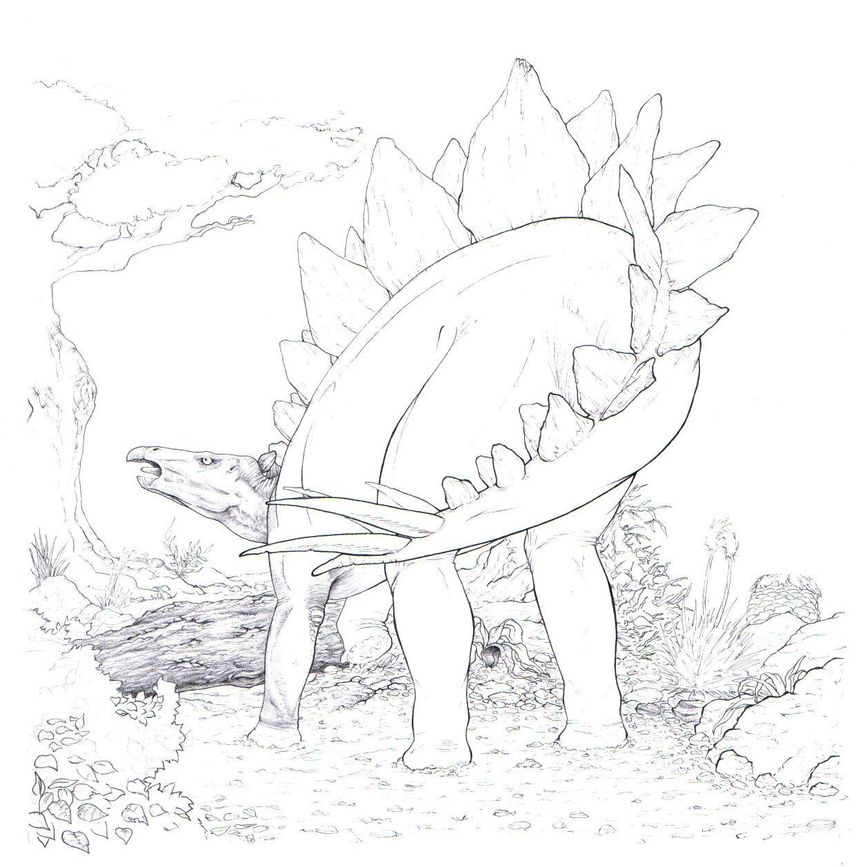 unfinished stegosaur by uialwen
