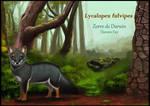 Darwin fox by uialwen