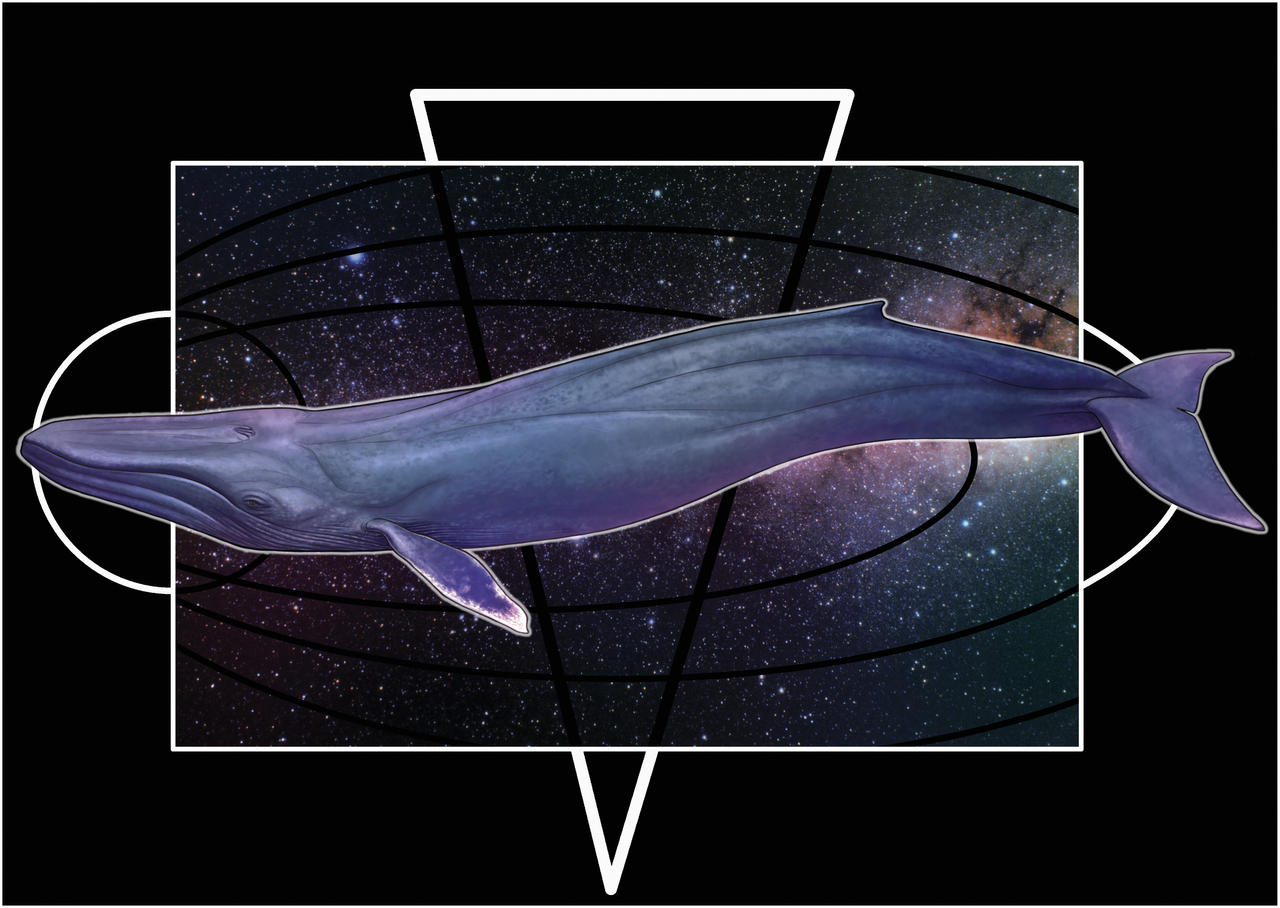 Space whale by uialwen