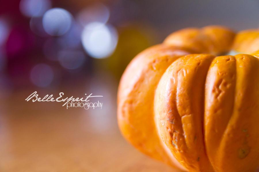 Pet Pumpkin by BelleEsprit