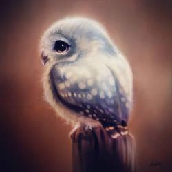 Blue Owl by ArtofOkan