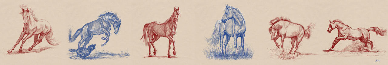 Horse sketches by ArtofOkan