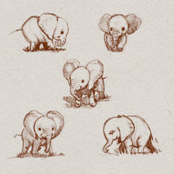 Baby Elephants Character Sheet by ArtofOkan