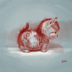 Chubby kitten
