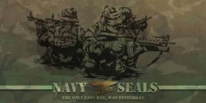 NAVY SEALS II