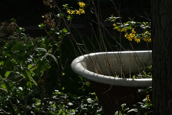 bathtub by toni4bologna